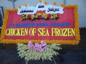 chicken the sea